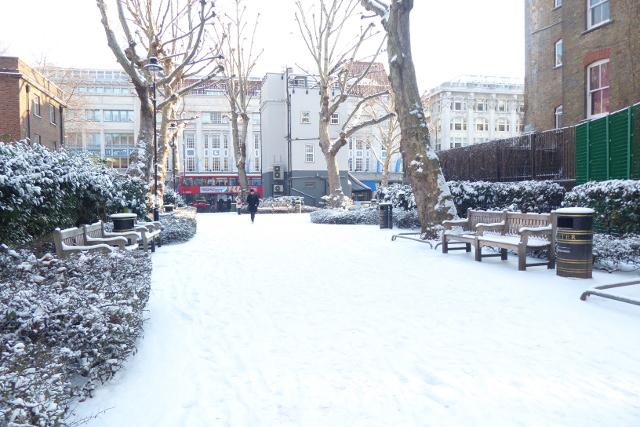 Public park after snowfall.