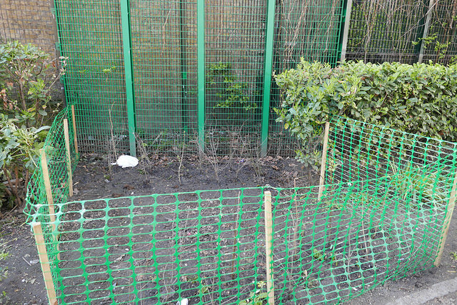 Green netting around planted area.